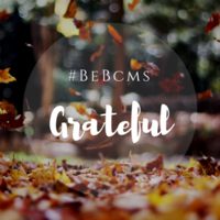 #BeBCMS Community Newsletter